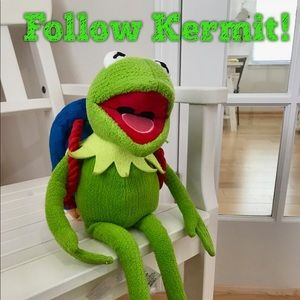Other - Kermit travels with us!